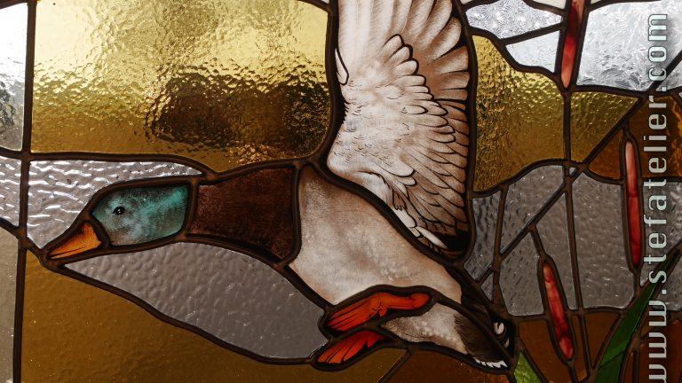 vitrail canard col vert en vol